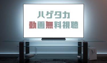 ドラマ|ハゲタカの動画を1話から全話無料で見れる動画配信まとめ