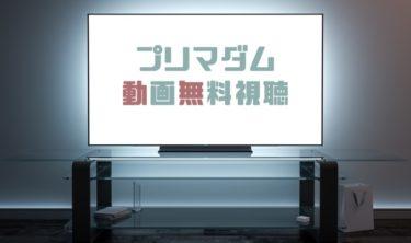 ドラマ|プリマダムの動画を1話から無料で見れる動画配信まとめ