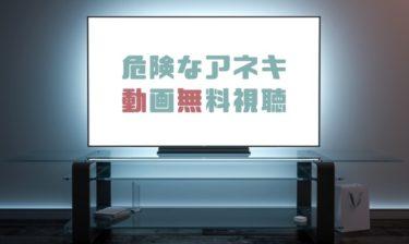 ドラマ|危険なアネキの動画を全話無料で見れる動画配信まとめ