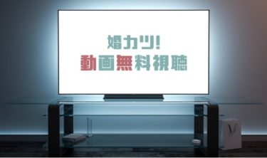 ドラマ|婚カツ!の動画を1話から全話無料で見れる動画配信まとめ