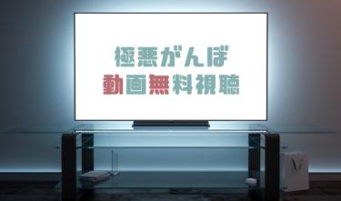ドラマ|極悪がんぼの動画を1話から無料で見れる動画配信まとめ
