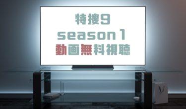 ドラマ|特捜9 season1の動画を1話から無料で見れる動画配信まとめ