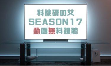 ドラマ|科捜研の女シーズン17の動画を無料で見れる動画配信まとめ