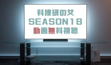 ドラマ|科捜研の女シーズン18の動画を無料で見れる動画配信まとめ