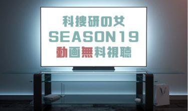 ドラマ|科捜研の女シーズン19の動画を1話から無料で見れる動画配信まとめ