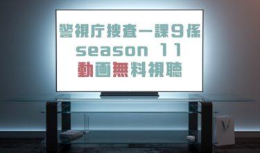 ドラマ|警視庁捜査一課9係season 11の動画を全話無料で見れる動画配信まとめ