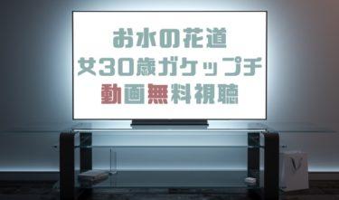 ドラマ|お水の花道の動画を1話から無料で見れる動画配信まとめ