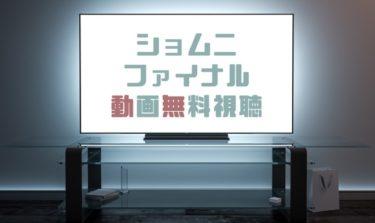 ドラマ|ショムニファイナルの動画を無料で見れる動画配信まとめ