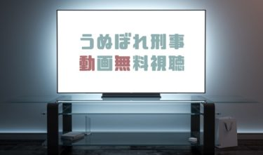 ドラマ|うぬぼれ刑事の動画を1話から全話無料で見れる動画配信まとめ