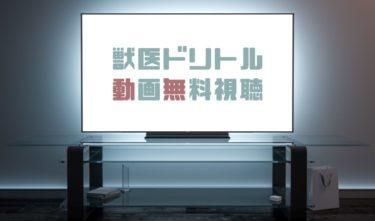 ドラマ|獣医ドリトルの動画を無料で見れる動画配信まとめ