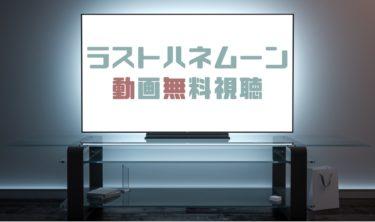 ドラマ ラストハネムーンの動画を1話から無料で見れる動画配信まとめ