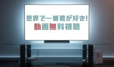 ドラマ|世界で一番君が好き!の動画を無料で見れる動画配信まとめ