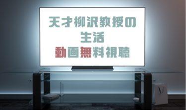 ドラマ|天才柳沢教授の生活の動画を無料で見れる動画配信まとめ