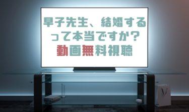 ドラマ|早子先生結婚するって本当ですかの動画を無料で見れる動画配信まとめ
