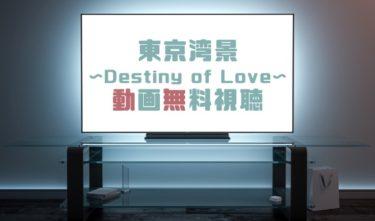ドラマ|東京湾景Destiny of Loveの動画を無料で見れる動画配信まとめ