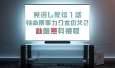 ドラマ|特命刑事カクホの女2第1話の見逃し動画を無料で見れる動画配信まとめ
