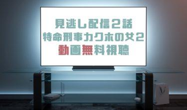 ドラマ|特命刑事カクホの女2第2話の見逃し動画を無料で見れる動画配信まとめ