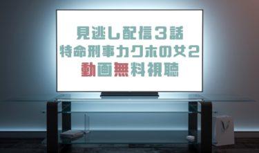 ドラマ 特命刑事カクホの女2第3話の見逃し動画を無料で見れる動画配信まとめ