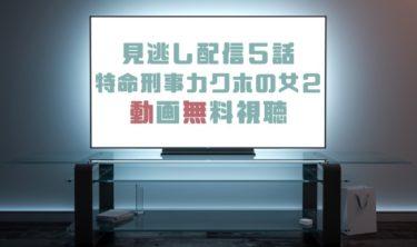 ドラマ|特命刑事カクホの女2第5話の見逃し動画を無料で見れる動画配信まとめ