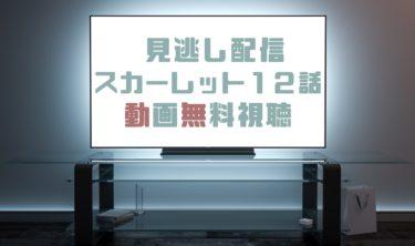 ドラマ|スカーレット12話の見逃し動画を無料で見れる動画配信まとめ