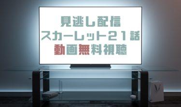 ドラマ|スカーレット21話の見逃し動画を無料で見れる動画配信まとめ