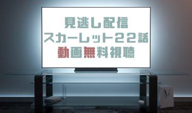 ドラマ|スカーレット22話の見逃し動画を無料で見れる動画配信まとめ