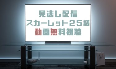 ドラマ|スカーレット25話の見逃し動画を無料で見れる動画配信まとめ