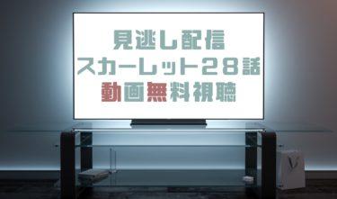 ドラマ|スカーレット28話の見逃し動画を無料で見れる動画配信まとめ