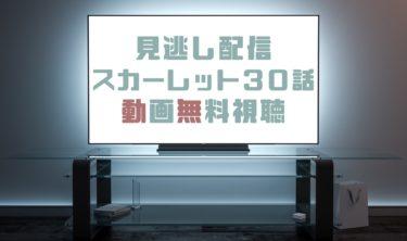 ドラマ|スカーレット30話の見逃し動画を無料で見れる動画配信まとめ