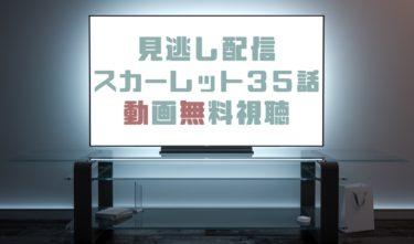 ドラマ|スカーレット35話の見逃し動画を無料で見れる動画配信まとめ