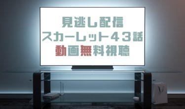 ドラマ|スカーレット43話の見逃し動画を無料で見れる動画配信まとめ