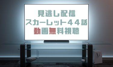 ドラマ|スカーレット44話の見逃し動画を無料で見れる動画配信まとめ