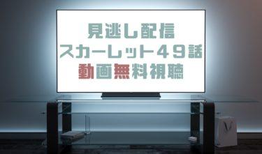 ドラマ|スカーレット49話の見逃し動画を無料で見れる動画配信まとめ