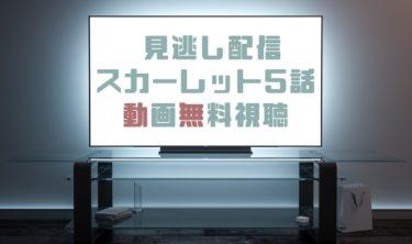 ドラマ|スカーレット5話の見逃し動画を無料で見れる動画配信まとめ