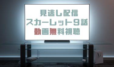 ドラマ|スカーレット9話の見逃し動画を無料で見れる動画配信まとめ