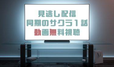 ドラマ|同期のサクラ1話の見逃し動画を無料で見れる動画配信まとめ