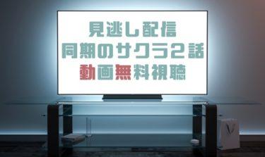 ドラマ|同期のサクラ2話の見逃し動画を無料で見れる動画配信まとめ