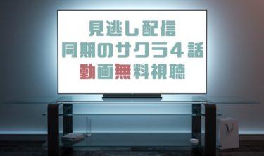 ドラマ 同期のサクラ4話の見逃し動画を無料で見れる動画配信まとめ