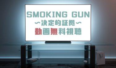 ドラマ|SMOKING GUN決定的証拠の動画を無料で見れる動画配信まとめ