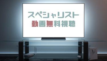 ドラマ|スペシャリストの動画を全話無料で見れる動画配信まとめ