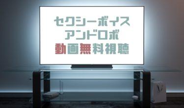 ドラマ|セクシーボイスアンドロボの動画を全話無料で見れる動画配信まとめ