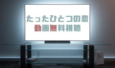 ドラマ|たったひとつの恋の動画を1話から全話無料で見れる動画配信まとめ