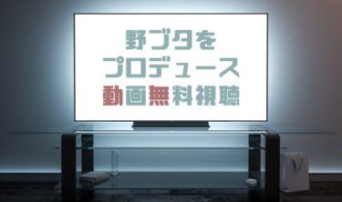 ドラマ|野ブタをプロデュースの動画を無料で見れる動画配信まとめ