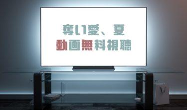ドラマ|奪い愛、夏の動画を無料で見れる動画配信まとめ