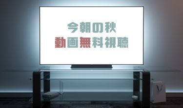 ドラマ|今朝の秋の動画を1話から全話無料で見れる動画配信まとめ