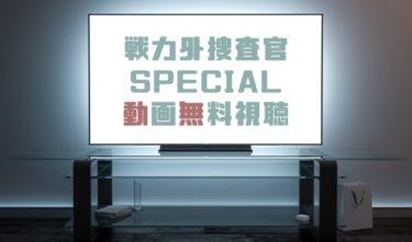 ドラマ|戦力外捜査官SPECIALの動画を無料で見れる動画配信まとめ