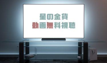 ドラマ|星の金貨の動画を1話から全話無料で見れる動画配信まとめ