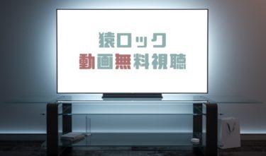 ドラマ|猿ロックの動画を1話から全話無料で見れる動画配信まとめ