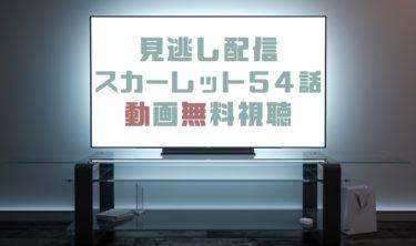 ドラマ|スカーレット54話の見逃し動画を無料で見れる動画配信まとめ