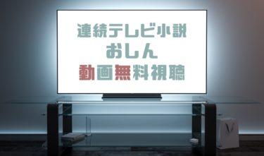ドラマ|おしんの動画を1話から全話無料で見れる動画配信まとめ
